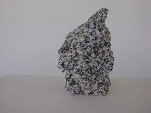 Ígnea cuarzodiorita