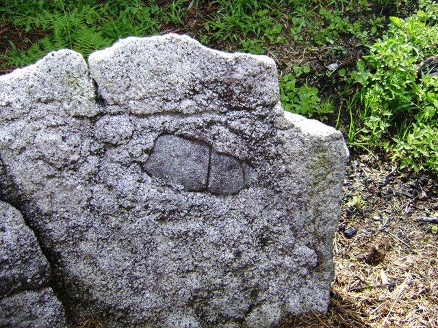 Petroglifo 4